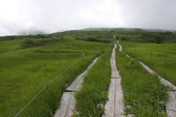 阿弥ヶ原湿原